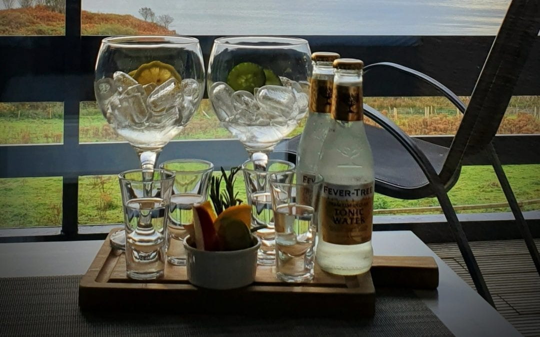 Pre-dinner Gin Flight – A Self-Guided Tasting Experience