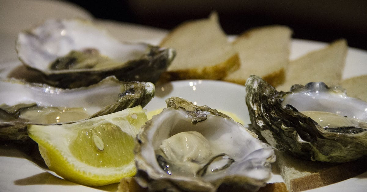 loch melfort hotel oban dining experience oysters